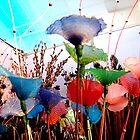 Flowers by SuryaManohar