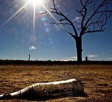Under a Scorching Sun by Pene Stevens