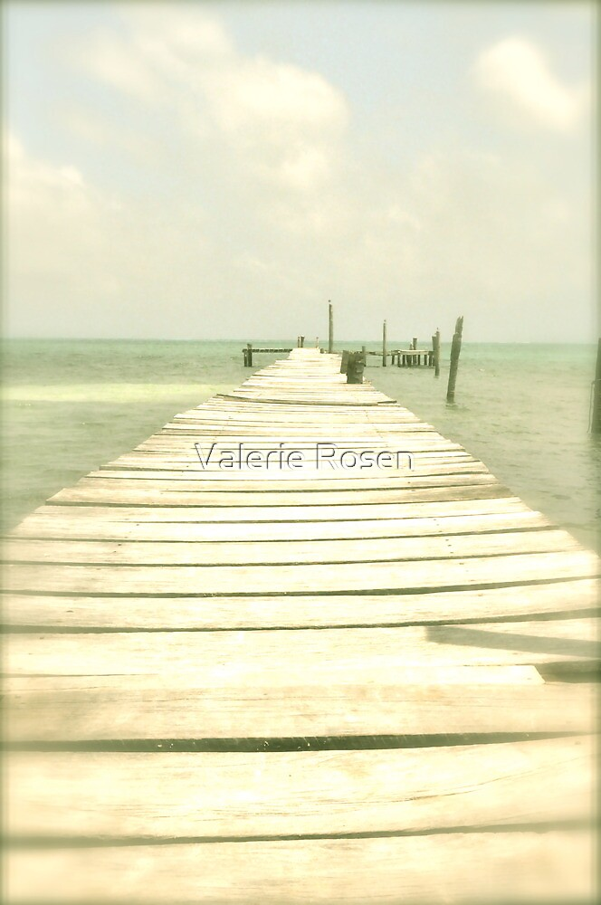 If you drop into the sea, you've gone too far... (or just enjoy!) by Valerie Rosen