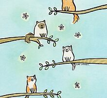 Cats in Trees by zoel