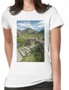 Decorative Iron Gate  Womens Fitted T-Shirt