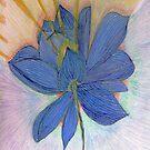 Lotus Light by tkrosevear