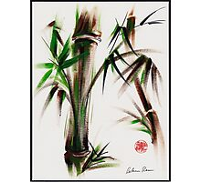 """""""Motu"""" -  acrylic and ink wash painting of bamboo. Photographic Print"""