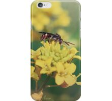 Wasp on Flower - Nature Photography iPhone Case/Skin