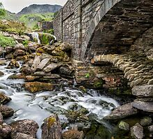 Old Packhorse Bridge  by Adrian Evans