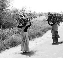 transporting firewood, female version by moyo