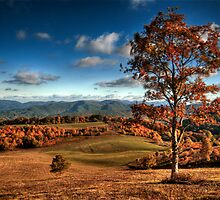 Max Patch, NC by Spencer Black