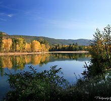 North Thompson River in Autumn by Linda Davidson