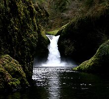 Punch Bowl Falls - Columbia Gorge by Greg Anderson