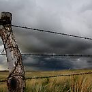 Nebraska Fence Post by Mike Olbinski