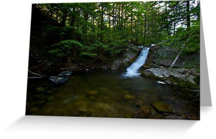 Adirondack's by Jeff Palm Photography