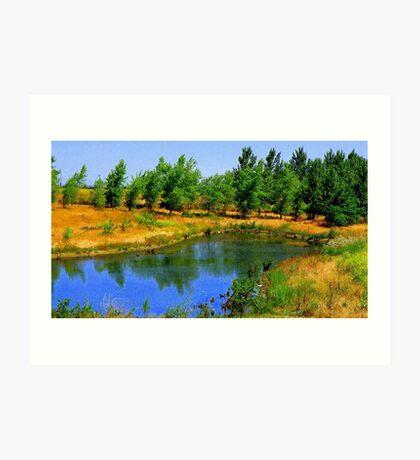 Nature reserve  Art Print