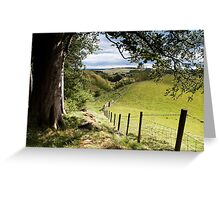 the view from above scaleber force waterfall Greeting Card