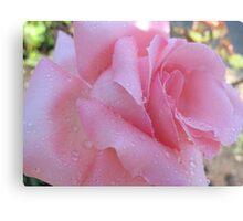Jane Austen Rose Metal Print