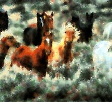Brumbies by Bunny Clarke