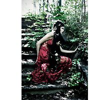 fairy tale Photographic Print