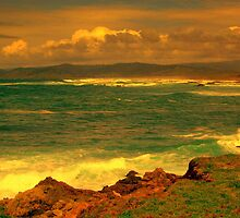 Mendocino Coast # 5, Northern California by Ascender Photography