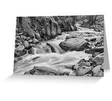 Cascading Colorado Rocky Mountain Stream BW Greeting Card