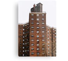 Lives in the windows Metal Print