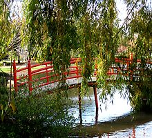 Bridge and willow tree. by Marilyn Baldey