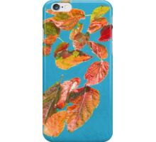 Autumn Leaves floating with friends  iPhone Case/Skin