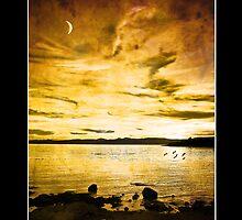 West Coast Sunset  by Nick  Kenrick Photography