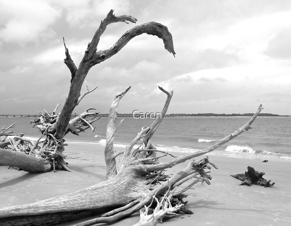 Boneyard Beach by Caren