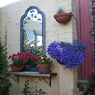 Petunias, pansies and lobelia. by joycee