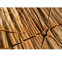 Splitting Wood Photographic Print