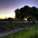 Connaught Sunset by PrecisionFX
