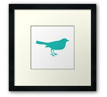 Turquoise Birdy Framed Print