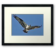 How's the View, Little Buddy? Framed Print