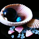 Shells and Colored Stones by LeftHandPrints