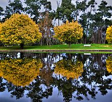 Autumn Reflections #2 by Elaine Short