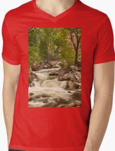 Rocky Mountain Streamin Dreamin Mens V-Neck T-Shirt
