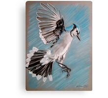 """Blue Jay"" Canvas Print"