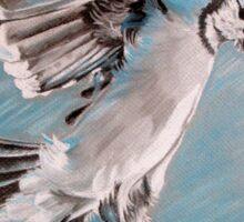 """Blue Jay"" Sticker"