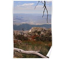 Mount Buffalo View Poster