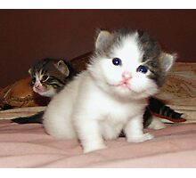 Adorable Duo Photographic Print