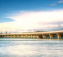 Forster Bridge Panorama by Matthew Jones