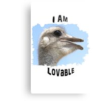 I Am Lovable Metal Print