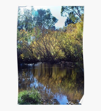 Bendigo Gold : Autumn at Strathdale Poster