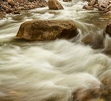 Rocky Mountain Streaming by Bo Insogna