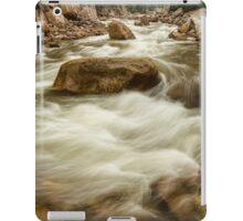 Rocky Mountain Streaming iPad Case/Skin