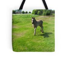 Belle Tote Bag