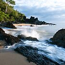 Early Morning at Palm Cove by AnnieD