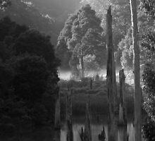 Elizabeth Tree by Jay  Little