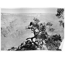 GRAND CANYON sans colour #2 Poster