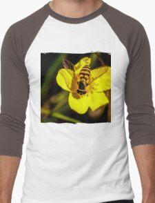 Hover fly on yellow flower Men's Baseball ¾ T-Shirt