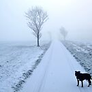 Winter Morning Walk by Ludwig Wagner